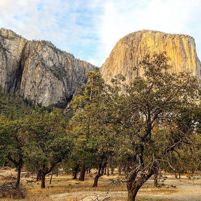 Heute den ersten Eindruck vom Yosemite National Park gemacht. Wow! Wunderschön! #roadtrip #california #yosemite