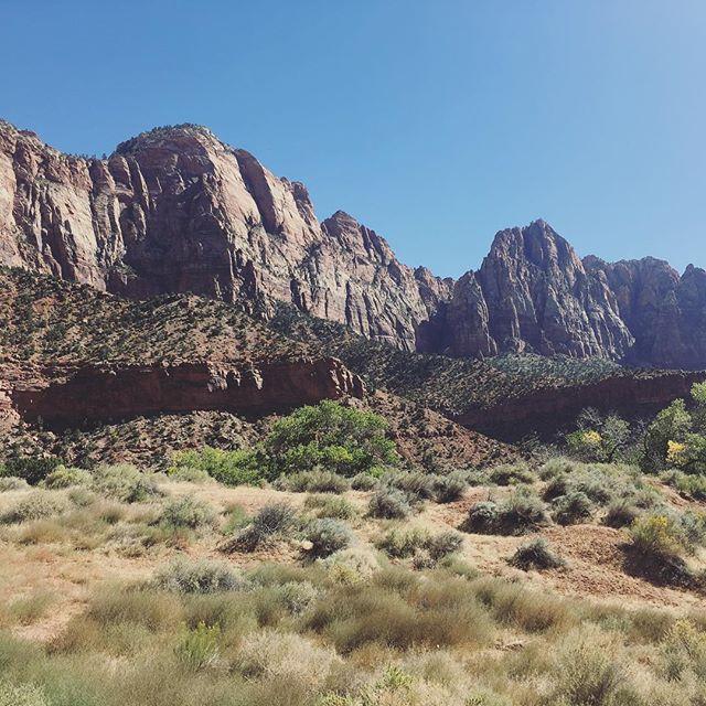 Heute erkunden wir den Zion National Park. Super schön hier! #roadtrip #zionnationalpark #utah